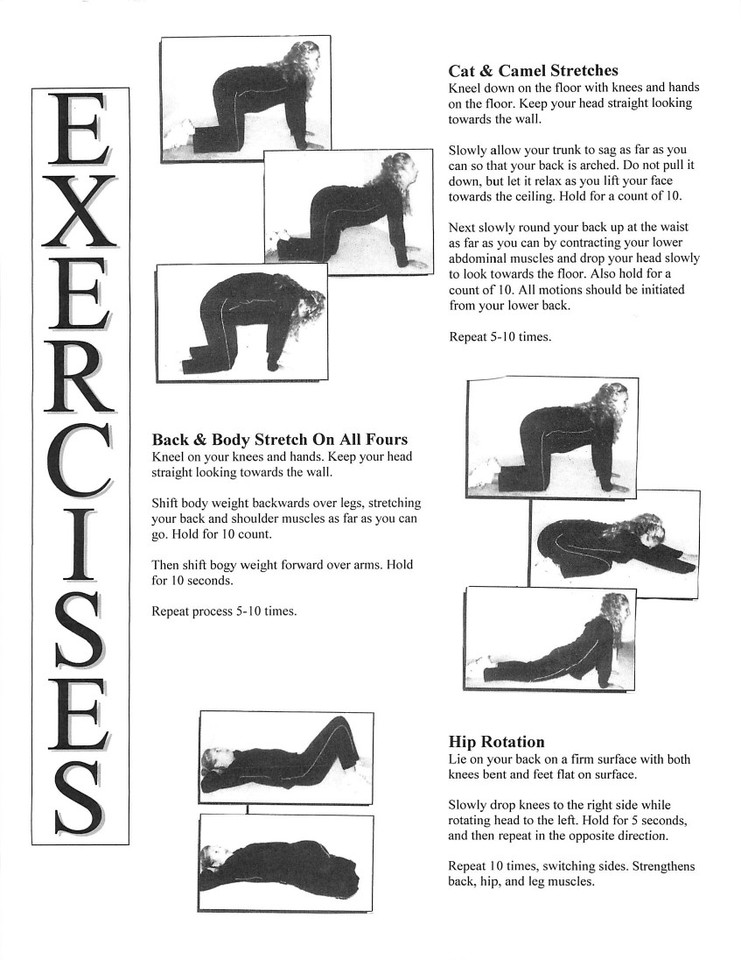 low back exercises pdf