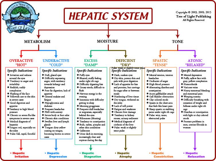 liver detoxification pathways pdf